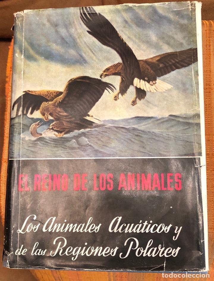 1 LOS ANIMALES ACUATICOS Y LAS REGIONES POLARES(17€) (Libros Antiguos, Raros y Curiosos - Ciencias, Manuales y Oficios - Bilogía y Botánica)