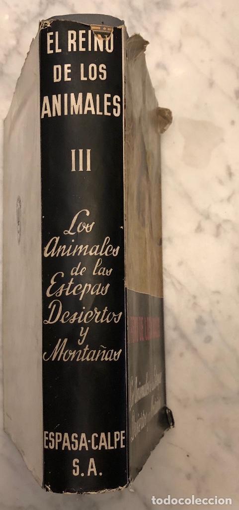 Libros antiguos: 3 Los Animales de las Estepas Desiertos y Montañas(17€) - Foto 3 - 154376358