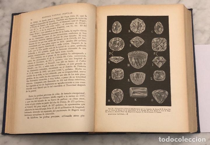 Libros antiguos: HISTORIA NATURAL(45€) - Foto 3 - 154376562