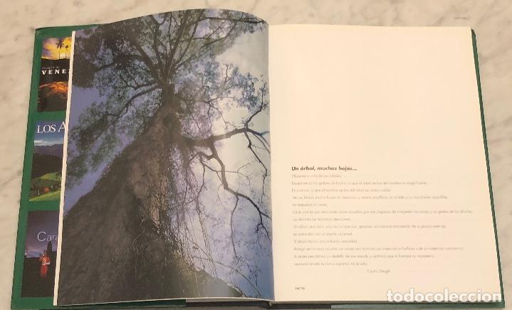 Libros antiguos: Un Arbol,muchas hojas(15€) - Foto 2 - 154476294