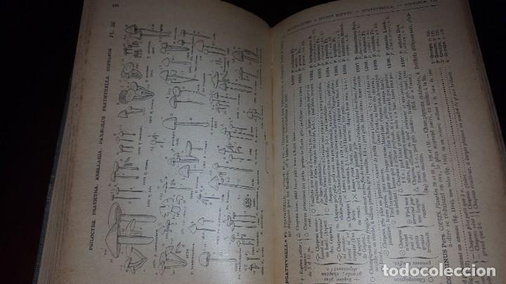 Libros antiguos: Nouvelle flore des Champignons - 1934 - Foto 8 - 154866962