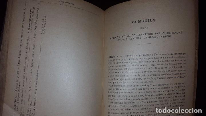 Libros antiguos: Nouvelle flore des Champignons - 1934 - Foto 9 - 154866962