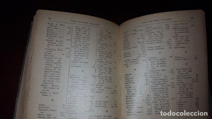 Libros antiguos: Nouvelle flore des Champignons - 1934 - Foto 11 - 154866962