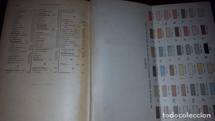 Libros antiguos: Nouvelle flore des Champignons - 1934 - Foto 14 - 154866962