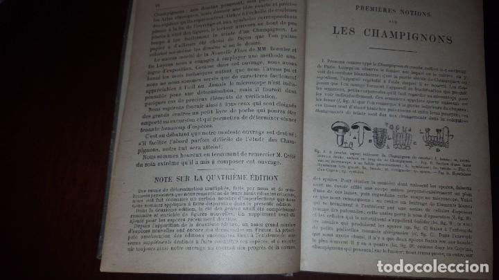 Libros antiguos: Nouvelle flore des Champignons - 1934 - Foto 15 - 154866962