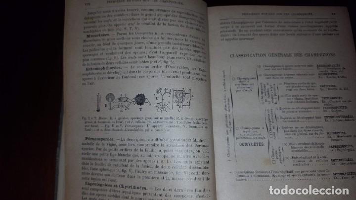 Libros antiguos: Nouvelle flore des Champignons - 1934 - Foto 16 - 154866962
