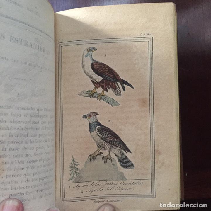 Libros antiguos: Colección Obras Completas de Buffon - Foto 13 - 151907094
