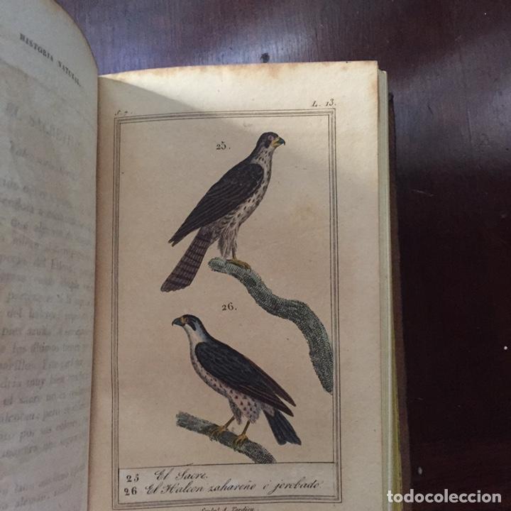 Libros antiguos: Colección Obras Completas de Buffon - Foto 14 - 151907094