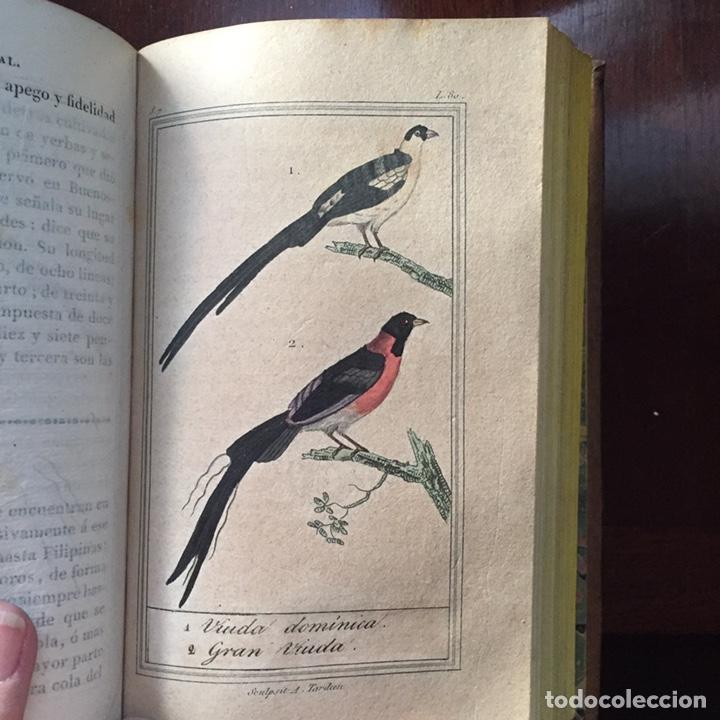 Libros antiguos: Colección Obras Completas de Buffon - Foto 20 - 151907094