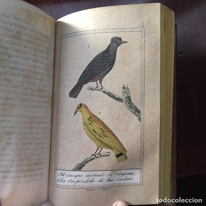 Libros antiguos: Colección Obras Completas de Buffon - Foto 18 - 151907094