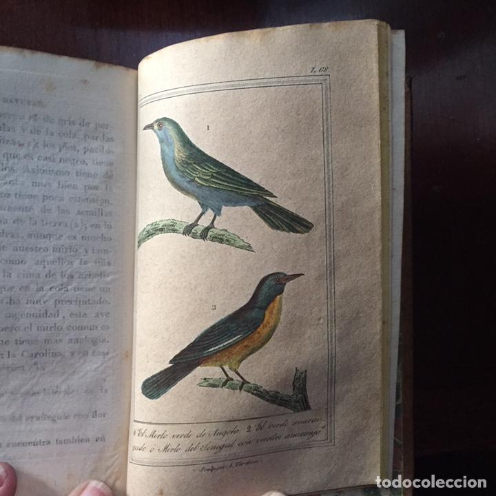 Libros antiguos: Colección Obras Completas de Buffon - Foto 19 - 151907094