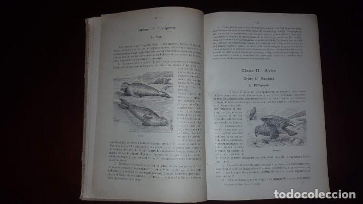 Libros antiguos: Nociones de Historia Natural - Segundo grado - Schmeil - 1926 - Foto 6 - 155528078