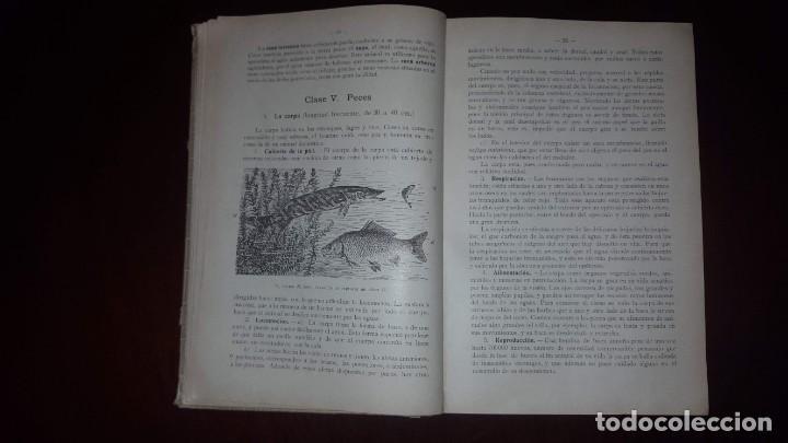 Libros antiguos: Nociones de Historia Natural - Segundo grado - Schmeil - 1926 - Foto 8 - 155528078