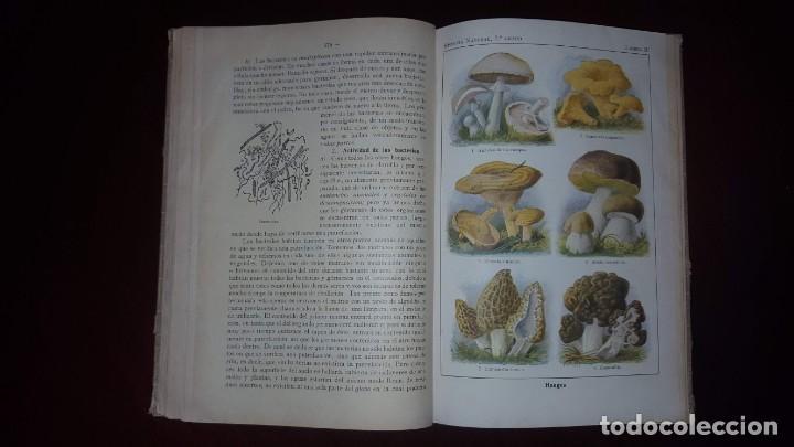 Libros antiguos: Nociones de Historia Natural - Segundo grado - Schmeil - 1926 - Foto 16 - 155528078