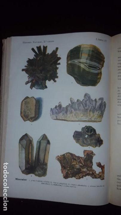 Libros antiguos: Nociones de Historia Natural - Segundo grado - Schmeil - 1926 - Foto 17 - 155528078