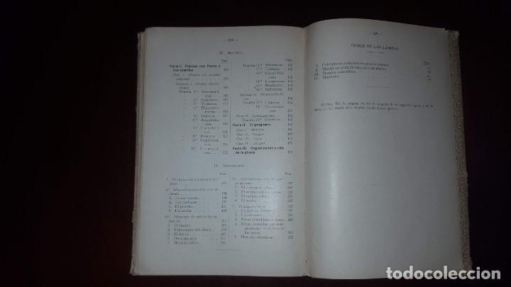 Libros antiguos: Nociones de Historia Natural - Segundo grado - Schmeil - 1926 - Foto 20 - 155528078