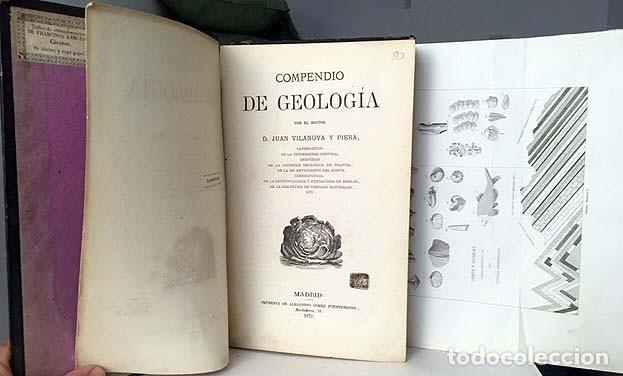 COMPENDIO DE GEOLOGÍA (M., 1872 VILANOVA Y PIERA) LÁMINAS GRABADAS PLEGADAS (FÓSILES, GEOGNOSIA, GEO (Libros Antiguos, Raros y Curiosos - Ciencias, Manuales y Oficios - Paleontología y Geología)