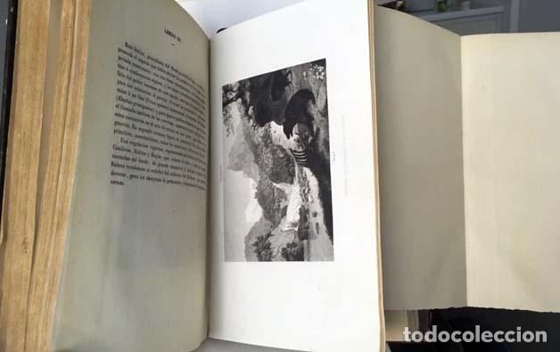 Libros antiguos: Compendio de Geología (M., 1872 Vilanova y Piera) Láminas grabadas plegadas (Fósiles, Geognosia, Geo - Foto 4 - 155544450