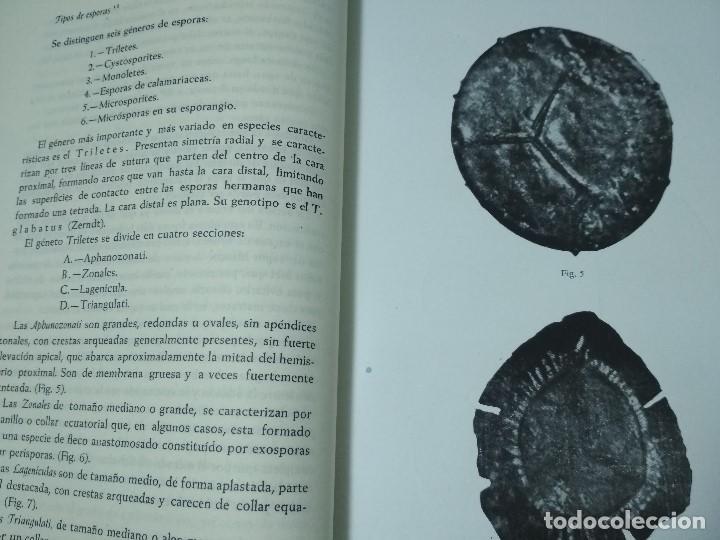 Libros antiguos: CURSILLO DE INTRODUCCION A LA INVESTIGACION SOBRE LAS HULLAS - Foto 3 - 156568350