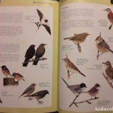 Libros antiguos: ANIMALES I PLANTES DE L'ALBUFERA-PLANTES PEIXOS,AUS,AVES,INSECTOS-ORNITOLOGIA-GENERALITAT VALENCIANA. Lote 158592882