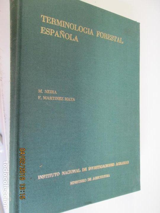 TERMINOLOGIA FORESTAL ESPAÑOLA , M.NEIRA - F. MARTINEZ MATA (Libros Antiguos, Raros y Curiosos - Ciencias, Manuales y Oficios - Bilogía y Botánica)