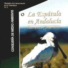 Libros antiguos: AVES, LA ESPÁTULA EN ANDALUCÍA, BASES PARA SU CONSERVACIÓN. Lote 160004162