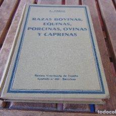 Libros antiguos: RAZAS BOVINAS EQUINAS PORCINAS OVINAS Y CAPRINAS, F.FAELLI 1932 REVISTA VETERINARIA DE ESPAÑA . Lote 160007614