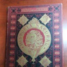 Libros antiguos: HISTORIA NATURAL , RAFAEL SALVATELLA EDITOR. 1888 TOMO SEGUNDO.. Lote 160444776