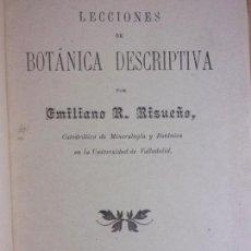 Libros antiguos: LECCIONES DE BOTÁNICA DESCRIPTIVA / EMILIANO R. RISUEÑO / 1904. Lote 160985290