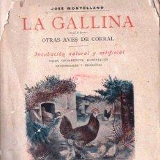 Libros antiguos: JOSÉ MONTELLANO : LA GALLINA Y OTRAS AVES DE CORRAL (SABATER, 1901)). Lote 161716438