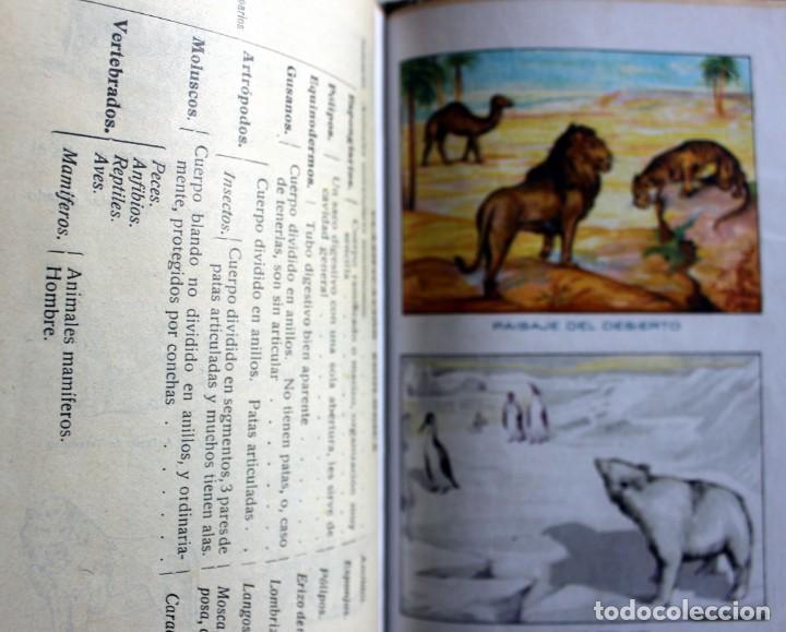 Libros antiguos: ANTIGUO LIBRO ELEMENTOS DE CIENCIAS FISICO NATURALES -GRADO ELEMENTAL -1923 - Foto 4 - 163081526