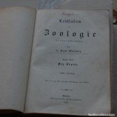 Libros antiguos: LIBRO ALEMÁN DE ZOOLOGÍA CON BONITOS GRABADOS 1898. Lote 164943070