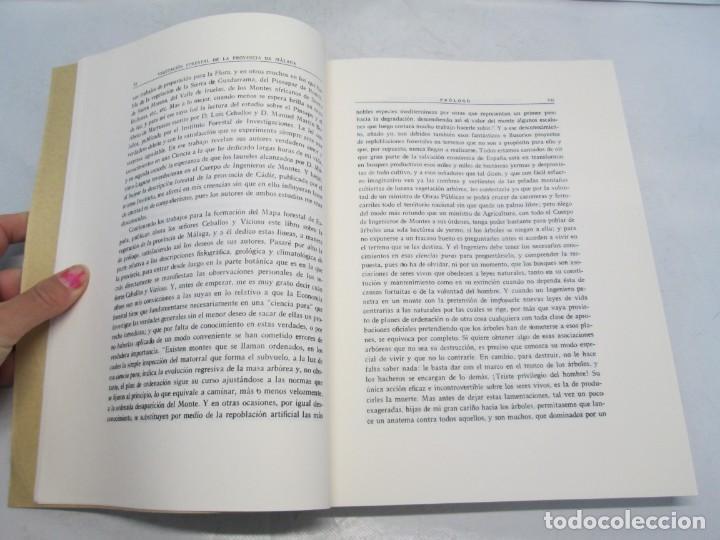 Libros antiguos: ESTUDIO SOBRE LA VEGETACION Y LA FLORA FORESTAL DE LA PROVINCIA DE MALAGA. LUIS CABALLOS. 1933 - Foto 8 - 164957490