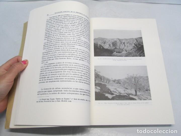 Libros antiguos: ESTUDIO SOBRE LA VEGETACION Y LA FLORA FORESTAL DE LA PROVINCIA DE MALAGA. LUIS CABALLOS. 1933 - Foto 9 - 164957490