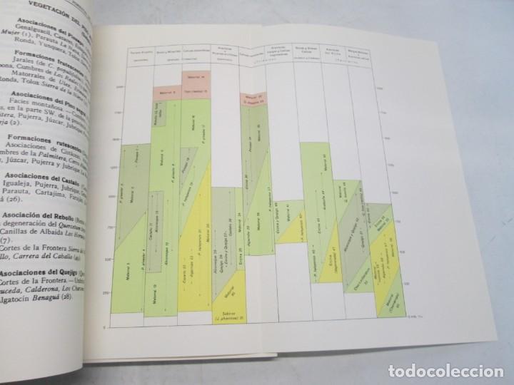 Libros antiguos: ESTUDIO SOBRE LA VEGETACION Y LA FLORA FORESTAL DE LA PROVINCIA DE MALAGA. LUIS CABALLOS. 1933 - Foto 10 - 164957490