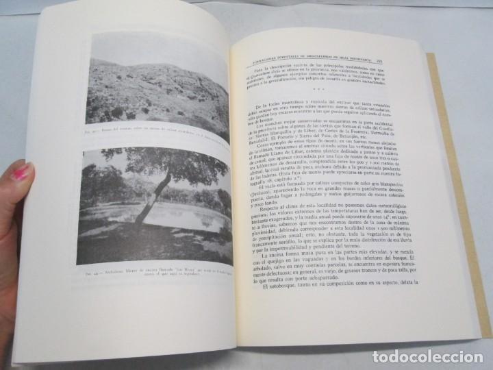Libros antiguos: ESTUDIO SOBRE LA VEGETACION Y LA FLORA FORESTAL DE LA PROVINCIA DE MALAGA. LUIS CABALLOS. 1933 - Foto 11 - 164957490