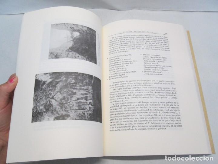 Libros antiguos: ESTUDIO SOBRE LA VEGETACION Y LA FLORA FORESTAL DE LA PROVINCIA DE MALAGA. LUIS CABALLOS. 1933 - Foto 12 - 164957490