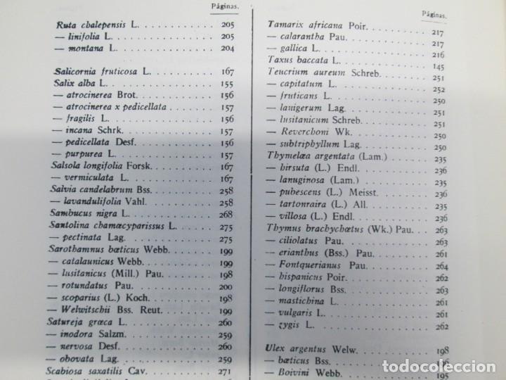 Libros antiguos: ESTUDIO SOBRE LA VEGETACION Y LA FLORA FORESTAL DE LA PROVINCIA DE MALAGA. LUIS CABALLOS. 1933 - Foto 20 - 164957490