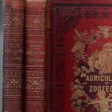 Libros antiguos: RIBERA : AGRICULTURA Y ZOOTECNIA TOMO I Y II (NACENTE, C. 1880). Lote 165588142