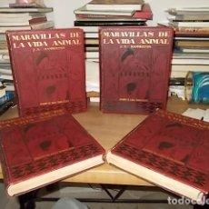 Libros antiguos: MARAVILLAS DEL MUNDO ANIMAL. 4 TOMOS . J.A. HAMMERTON. JOAQUIN GIL EDITOR. 1ª EDICIÓN 1930/ 1931. . Lote 166119430