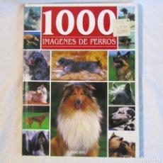 Libros antiguos: 1000 IMÁGENES DE PERROS, FRANÇOIS HUART, 1999. Lote 166321670