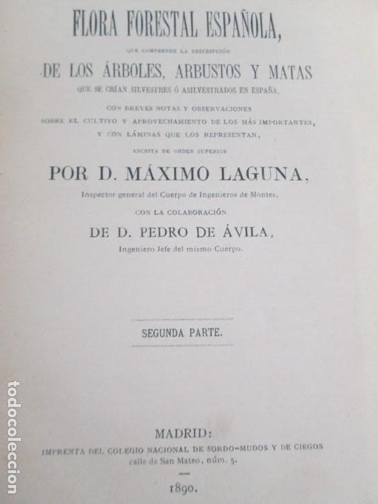 Libros antiguos: FLORA FORESTAL ESPAÑOLA DE LOS ARBOLES, ARBUSTOS Y MATAS. II PARTE. MAXIMO LAGUNA. 1890 - Foto 8 - 166526334