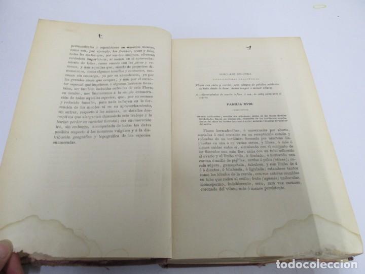 Libros antiguos: FLORA FORESTAL ESPAÑOLA DE LOS ARBOLES, ARBUSTOS Y MATAS. II PARTE. MAXIMO LAGUNA. 1890 - Foto 9 - 166526334