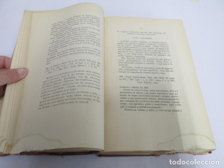 Libros antiguos: FLORA FORESTAL ESPAÑOLA DE LOS ARBOLES, ARBUSTOS Y MATAS. II PARTE. MAXIMO LAGUNA. 1890 - Foto 10 - 166526334