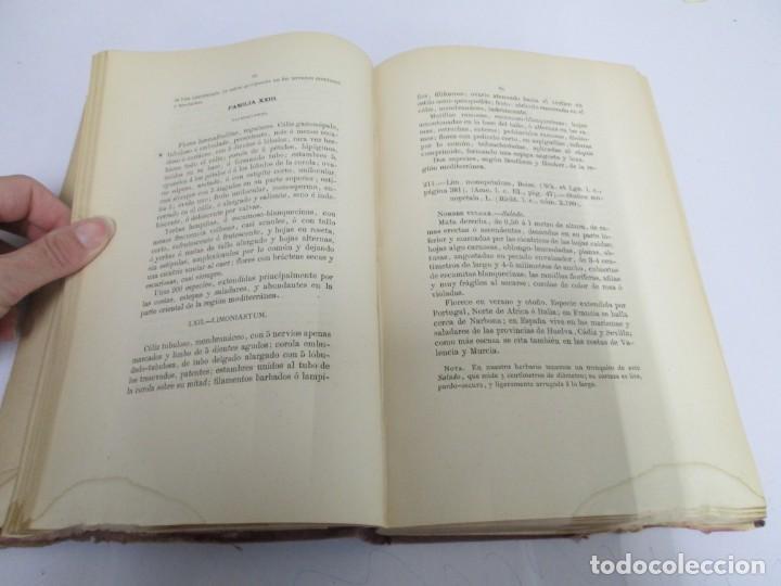 Libros antiguos: FLORA FORESTAL ESPAÑOLA DE LOS ARBOLES, ARBUSTOS Y MATAS. II PARTE. MAXIMO LAGUNA. 1890 - Foto 11 - 166526334