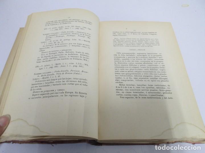 Libros antiguos: FLORA FORESTAL ESPAÑOLA DE LOS ARBOLES, ARBUSTOS Y MATAS. II PARTE. MAXIMO LAGUNA. 1890 - Foto 12 - 166526334