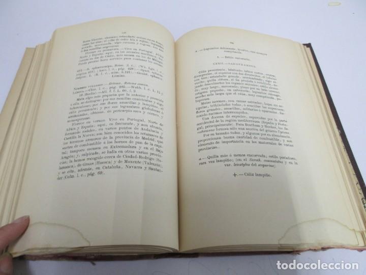 Libros antiguos: FLORA FORESTAL ESPAÑOLA DE LOS ARBOLES, ARBUSTOS Y MATAS. II PARTE. MAXIMO LAGUNA. 1890 - Foto 14 - 166526334