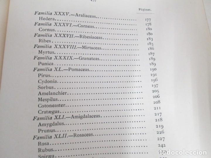 Libros antiguos: FLORA FORESTAL ESPAÑOLA DE LOS ARBOLES, ARBUSTOS Y MATAS. II PARTE. MAXIMO LAGUNA. 1890 - Foto 19 - 166526334
