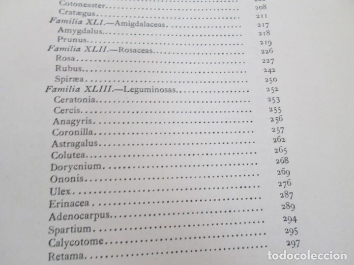 Libros antiguos: FLORA FORESTAL ESPAÑOLA DE LOS ARBOLES, ARBUSTOS Y MATAS. II PARTE. MAXIMO LAGUNA. 1890 - Foto 20 - 166526334