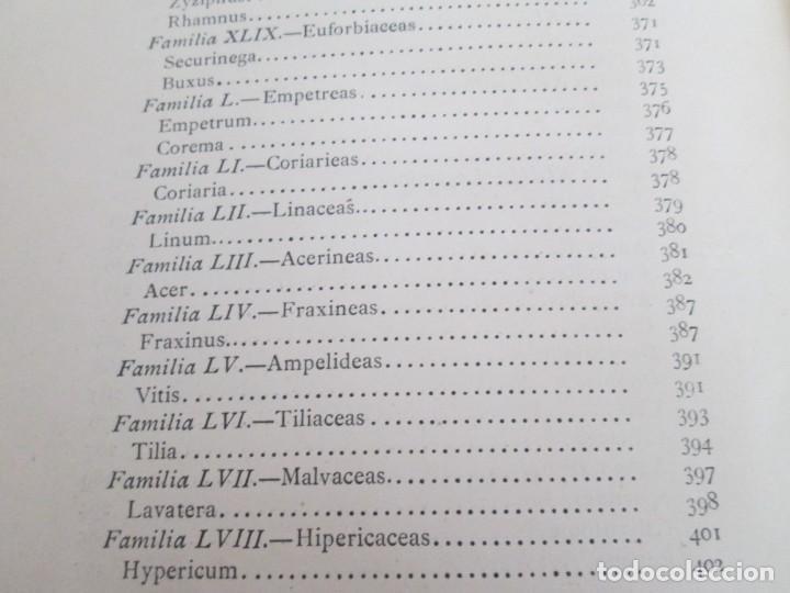 Libros antiguos: FLORA FORESTAL ESPAÑOLA DE LOS ARBOLES, ARBUSTOS Y MATAS. II PARTE. MAXIMO LAGUNA. 1890 - Foto 22 - 166526334